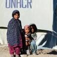 """<a href=""""http://www.unhcr.at/mandat/questions-und-answers/staatenlose.html"""">UNHCR: Was heißt staatenlos zu sein?</a>"""