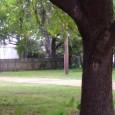 """<a href=""""https://vimeo.com/124336782""""></a> Ob das auch passiert wäre, wenn der Vorfall nicht zufällig von einem unbeteiligten Augenzeugen auf dem Mobiltelefon gefilmt worden wäre? Nach Todesschüssen auf einen 50jährigen offenbar unbewaffneten und fliehenden Schwarzen ist ein weißer Polizist im US-Bundesstaat South Carolina wegen Mordes angeklagt worden. Der Vorfall ereignete sich am Samstag morgen in Nord-Charleston, in der fast die Hälfte der 100.000 Einwohner Schwarze sind. Das FBI und [...]"""